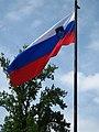 Slovenian flag.jpg