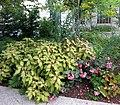 Smithsonian Gardens in October (22758747041).jpg