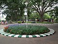 Snap from Lalbagh Flower Show Aug 2013 7831.JPG