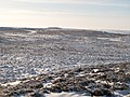 Snowy panorama from the Foumart Hills (14, SSW - Herds Law and Green Hill) - geograph.org.uk - 1658009.jpg