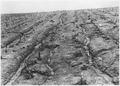 Soil Erosion - NARA - 195527.tif