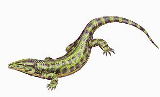 Solenodonsaurus - Life reconstruction by Dmitry Bogdanov