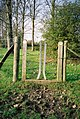 Sort of gate-stile, Warfield - geograph.org.uk - 78370.jpg