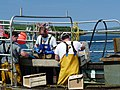 Sorting the catch at Ulva Ferry dock. - geograph.org.uk - 1342475.jpg