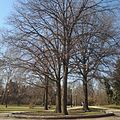 South Oval at Ohio State University (Feb 2012) - panoramio.jpg
