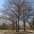 South Oval at Ohio State University (Feb 2012) - panoramio.jpg