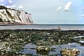 St. Margaret Bay Fisherman.jpg