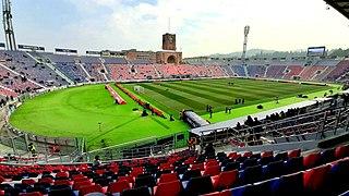Stadio Renato DallAra Football stadium