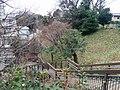 Stairs behind 亀塚公園.jpg
