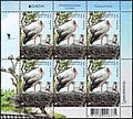 Stamp of Belarus - 2019 - Colnect 875679 - White Stork Ciconia ciconia.jpeg