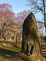 Standing stones at Clava chambered cairns site. - geograph.org.uk - 501621.jpg