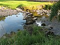 Stepping stones over the River Eden - geograph.org.uk - 1398932.jpg