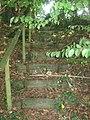 Steps near Romden Road, Maltman's Hill - geograph.org.uk - 1427960.jpg