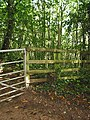 Stile in the woodland on The Penyard - geograph.org.uk - 508747.jpg