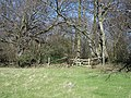 Stile into Frid Wood - geograph.org.uk - 364891.jpg