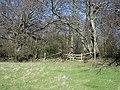 Stile into Frid Wood - geograph.org.uk - 364891.jpg