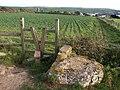 Stile on the path to Thurlestone - geograph.org.uk - 1514488.jpg