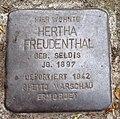 Stolperstein Lauenau Lange Straße 13 Hertha Freudenthal.jpg