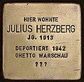 Stolperstein für Julius Herzberg (Cottbus).jpg