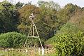 Storchenhorst in der Dingdener Heide.jpg