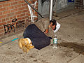 Street Sleeper No 16.jpg