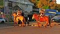 Street horses (30848914247).jpg