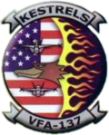 Strike Fighter Squadron 137 (US Navy) insignia c2002.png
