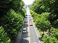 Suido Road of Sakura.JPG