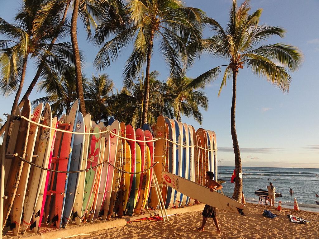 File Surfboards In Waikiki Jpg Wikimedia Commons