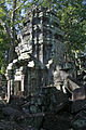 Ta Prohm - Shrine (4203088789).jpg