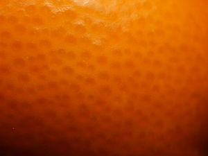 English: A tangerine close-up. Español: Fotogr...