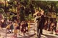 Taronga Park Zoo (27054100626).jpg