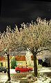 Terherne winter - panoramio.jpg