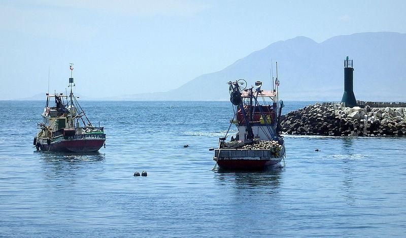 File:Terminal Pesquero de Antofagasta (3).JPG