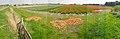 Texel - De Naal - Rommelpot - Panorama Flowerfield Viewing from North to SE.jpg
