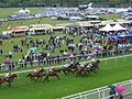 The 3.20 at Chester Racecourse ^2 - geograph.org.uk - 447938.jpg