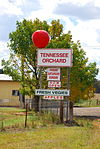 The Big Apple Yerrinbool.jpg