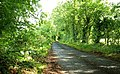 The Islandreagh Road, Dunadry - geograph.org.uk - 888666.jpg