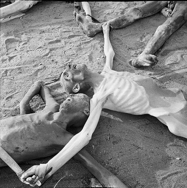 Lägerfångar som dött av svält