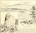 The Pine-tree coast (1891) (14595798039).jpg