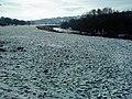 The River Wharfe - geograph.org.uk - 1721678.jpg