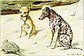 The book of dogs; an intimate study of mankind's best friend (1919) (20116505974).jpg