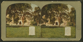The law library, Cambridge, Mass, from Robert N. Dennis collection of stereoscopic views 2.png