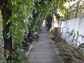 The stairs to the castle from the bottom.jpg