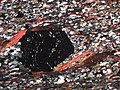 Thin section of garnet-mica-schist.jpg
