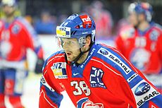Thomas Ziegler (ice hockey player).jpg