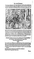 Thurnierbuch (Rüxner) 086.png