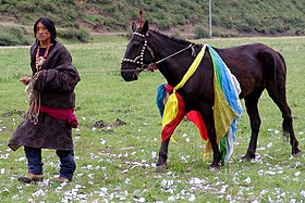 Tibetan Nomad with black horse, Gansu, China.jpg