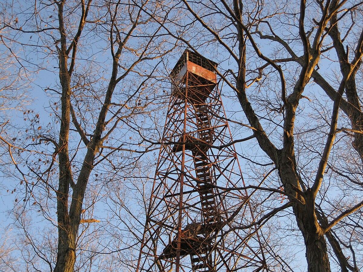 Cabwaylingo State Forest Wikipedia