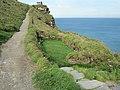 Tintagel Castle, Cornwall (461261) (9459136122).jpg